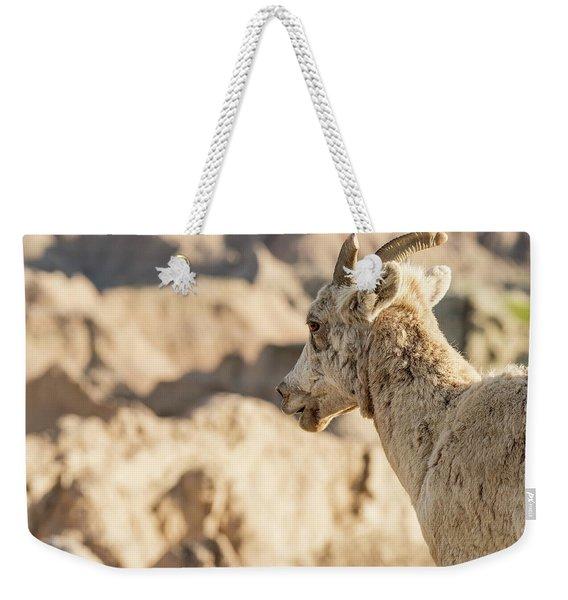 Mountain Sheep In Badlands National Park Weekender Tote Bag