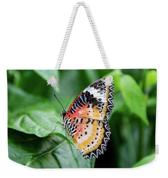 Multi Colored Butterfly Weekender Tote Bag