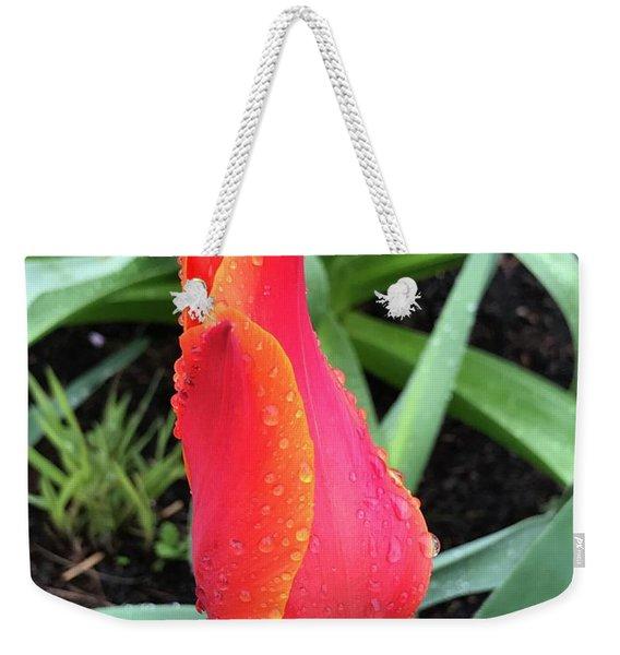 Multicolored Tulip Weekender Tote Bag