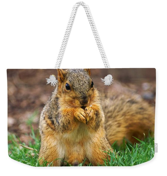 Munching Cute Fox Squirrel Weekender Tote Bag