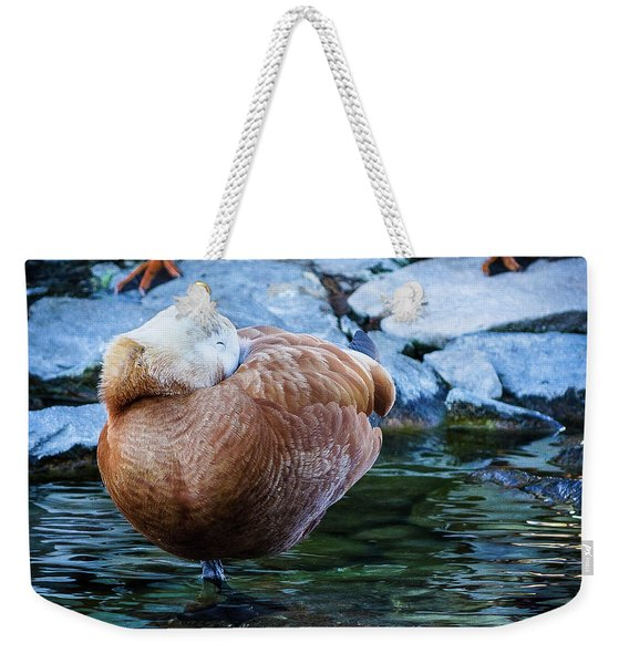 Napping At The Pond Weekender Tote Bag