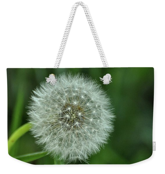 Weekender Tote Bag featuring the photograph Need A Breeze by JAMART Photography