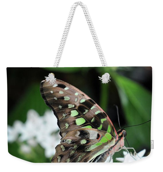 Weekender Tote Bag featuring the photograph Nicely by Michelle Wermuth