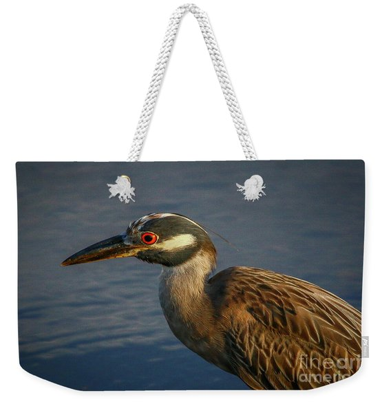 Weekender Tote Bag featuring the photograph Night Heron Portrait by Tom Claud