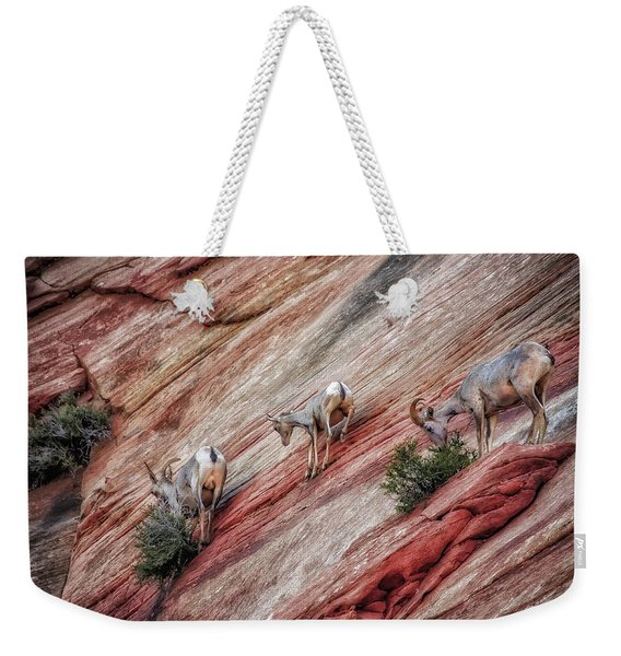 Nimble Mountain Goats 5694 Weekender Tote Bag