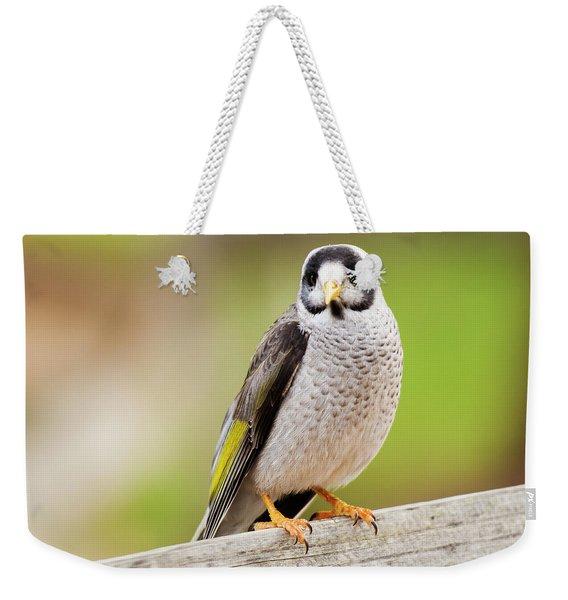 Noisy Miner Weekender Tote Bag