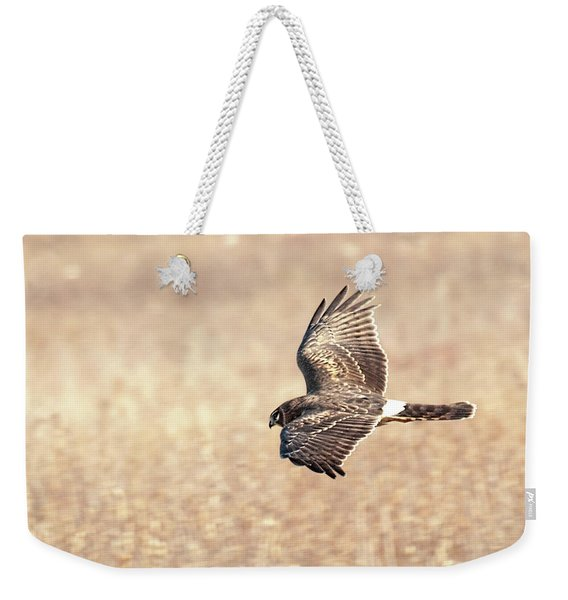 Northern Harrier The Hunt Weekender Tote Bag