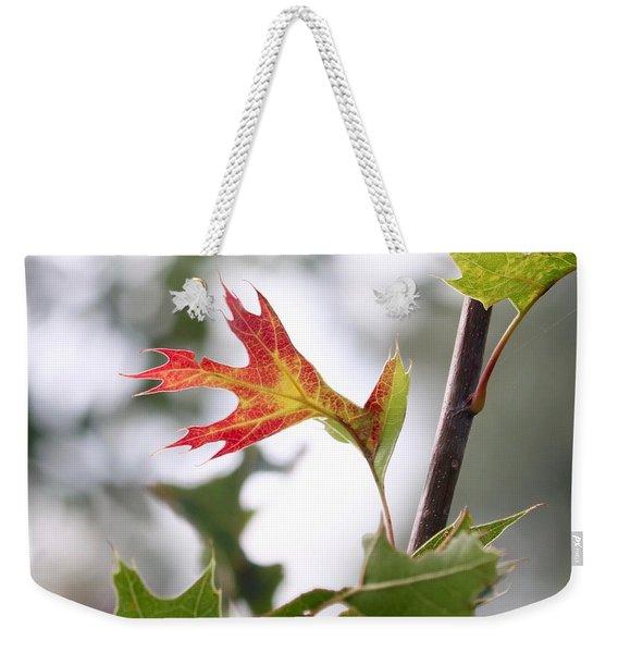 Oak Leaf Turning Weekender Tote Bag