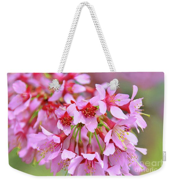 Okame Cherry Blossom Branch Weekender Tote Bag