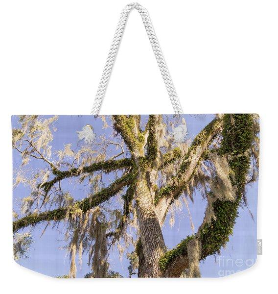 Old Moss Draped Live Oak Tree Weekender Tote Bag