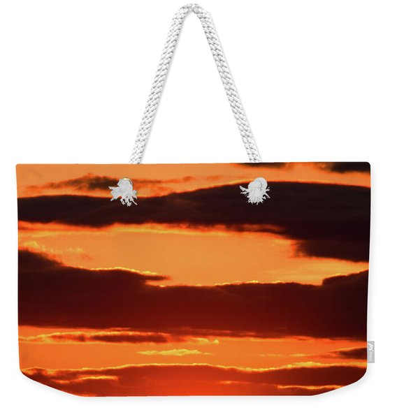 Weekender Tote Bag featuring the photograph Orange And Black by William Selander