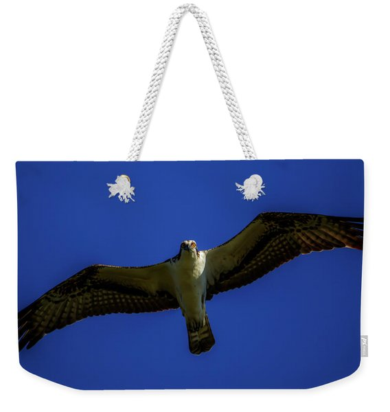 Osprey Glide In Blue Weekender Tote Bag