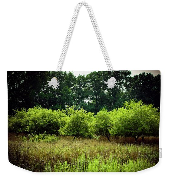 Weekender Tote Bag featuring the photograph Overgrown by Michelle Wermuth