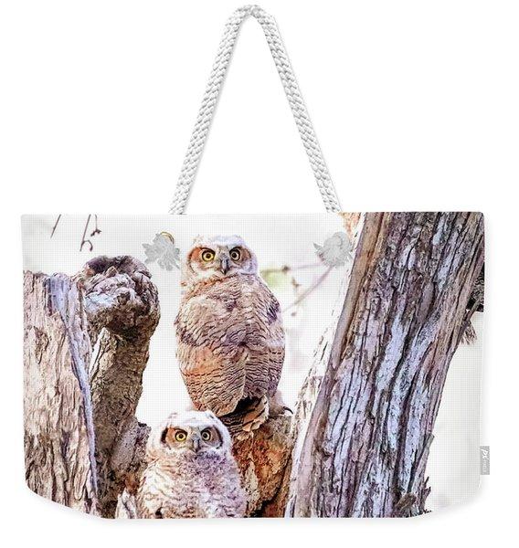 Owl Trio Standing Guard Weekender Tote Bag