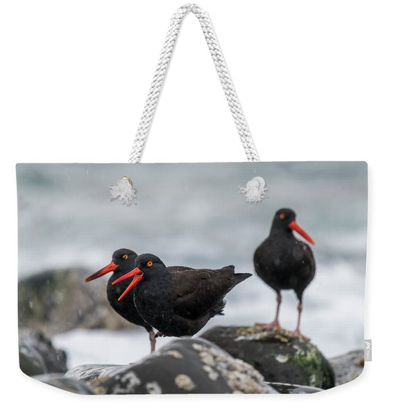 Oystercatchers In The Rain Weekender Tote Bag