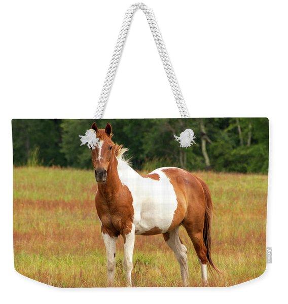 Paint Horse In Pasture Weekender Tote Bag