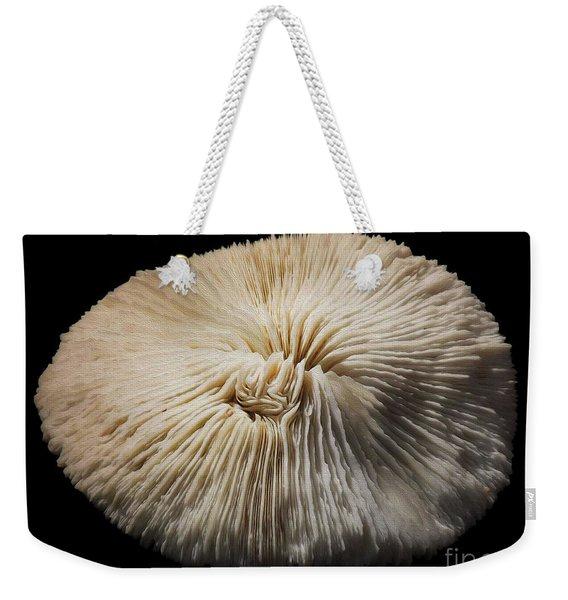 Painted Shell No. 7 Weekender Tote Bag