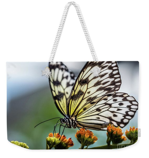 Weekender Tote Bag featuring the photograph Papillon by Robin Zygelman