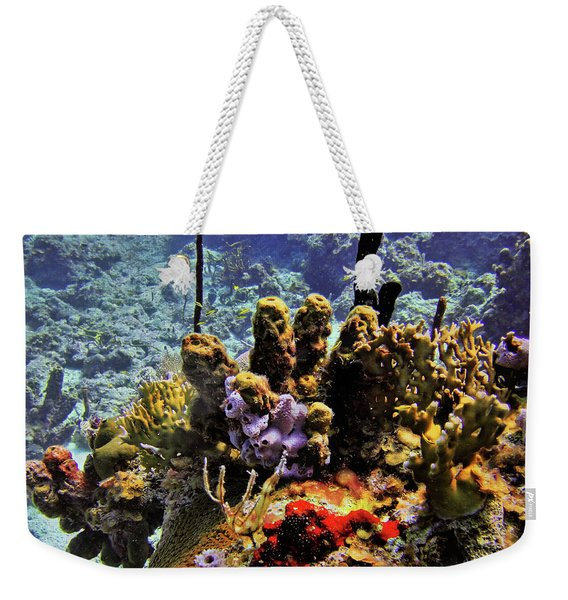 Patch Reef Bluff Weekender Tote Bag