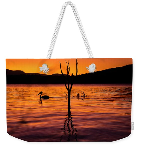 Weekender Tote Bag featuring the photograph Pelican by Rob D Imagery
