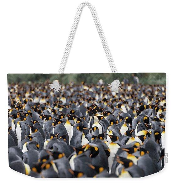 Penguinscape Weekender Tote Bag