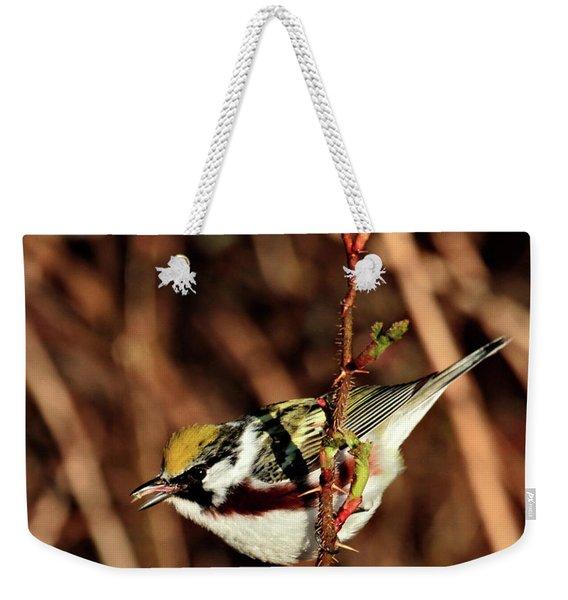 Perky Little Warbler Weekender Tote Bag