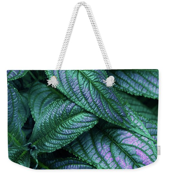 Persian Shield   Weekender Tote Bag
