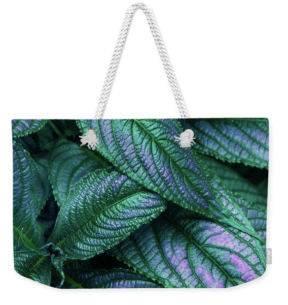 Persian Shield   Weekender Tote Bag