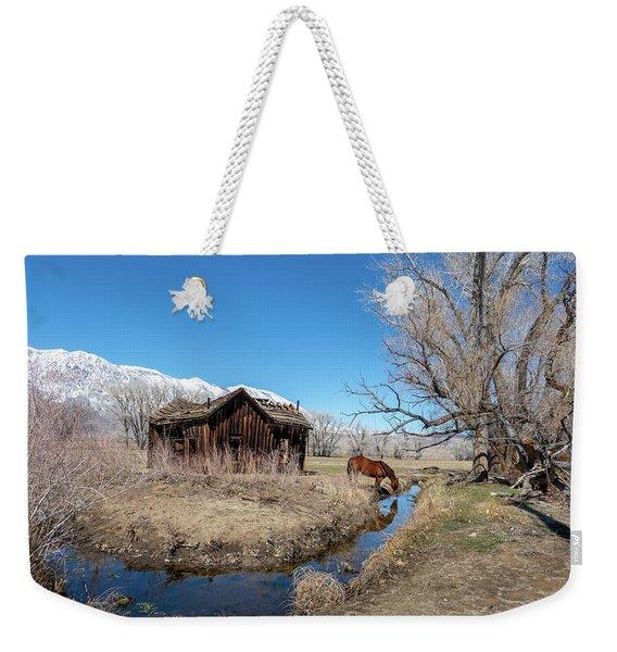 Pine Creek Horse Drinking Weekender Tote Bag