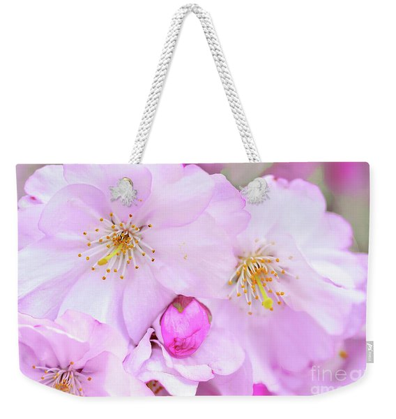 Pink Cherry Blossoms And Buds Weekender Tote Bag