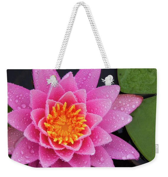 Weekender Tote Bag featuring the photograph Pink Petals In The Rain  by Jeff Sinon
