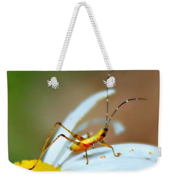 Pollen Tracks Weekender Tote Bag