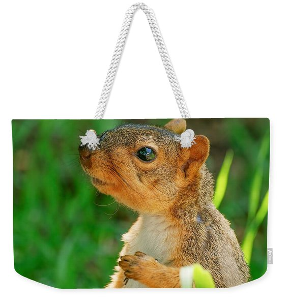 Pondering Squirrel Weekender Tote Bag