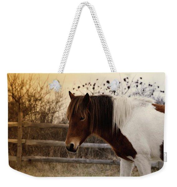 Pony Warm Up Weekender Tote Bag