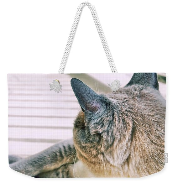 Weekender Tote Bag featuring the photograph Porch Stretch  by JAMART Photography