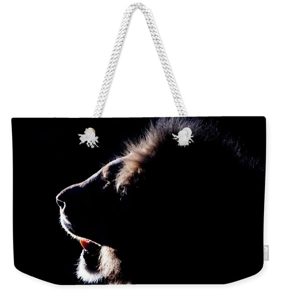 Portrait Of A Backlit Male African Lion Weekender Tote Bag