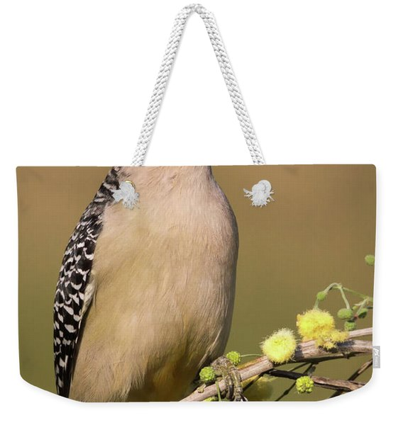 Portrait Of A Golden-fronted Woodpecker Weekender Tote Bag