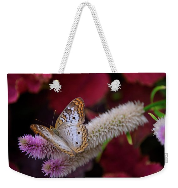 Weekender Tote Bag featuring the photograph Posed Perfect by Michelle Wermuth