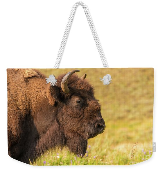 Weekender Tote Bag featuring the photograph Power Head by Dheeraj Mutha