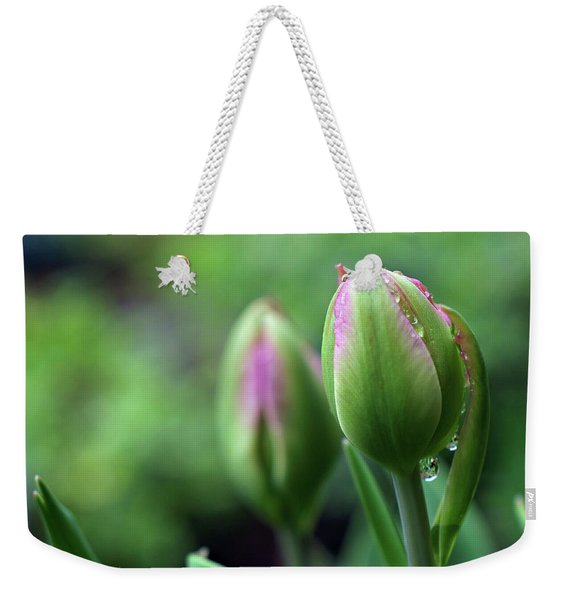 Weekender Tote Bag featuring the photograph Pray For Rain by Michelle Wermuth