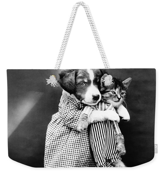 Puppy Holding A Kitten - The Nurse - Harry Whittier Frees Weekender Tote Bag