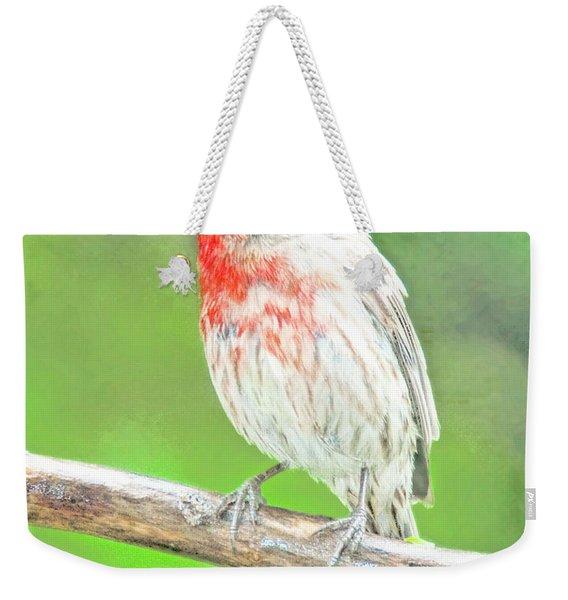Purple Finch, Animal Portrait Weekender Tote Bag