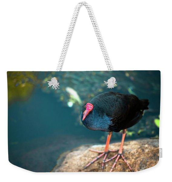 Purple Swamphenn Weekender Tote Bag