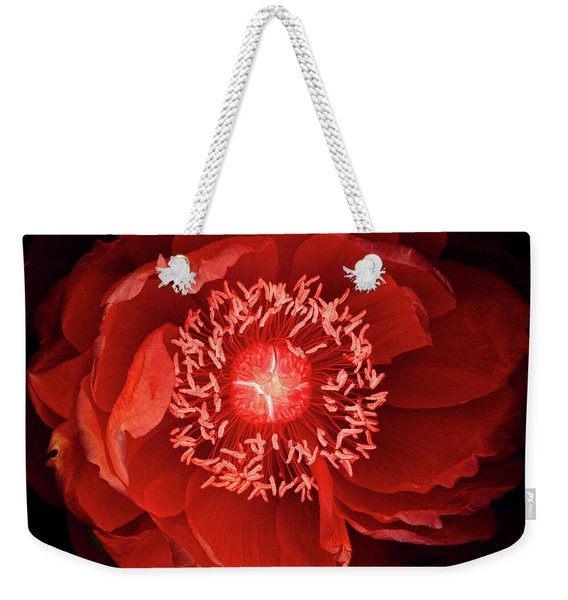 Queen Of The Night Number Four Weekender Tote Bag
