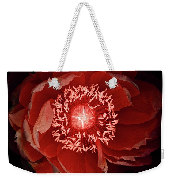 Queen Of The Night Number Three Weekender Tote Bag