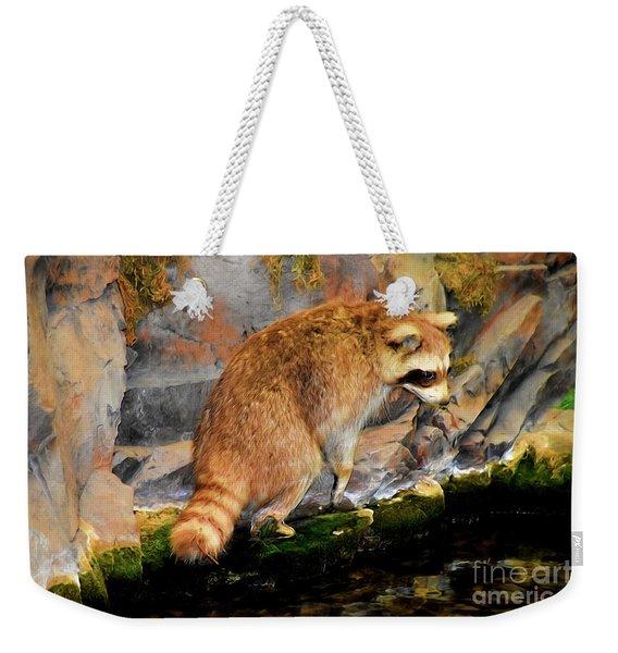 Raccoon 609 Weekender Tote Bag