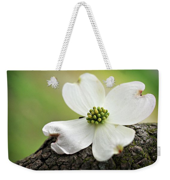Weekender Tote Bag featuring the photograph Raining Sunshine by Michelle Wermuth