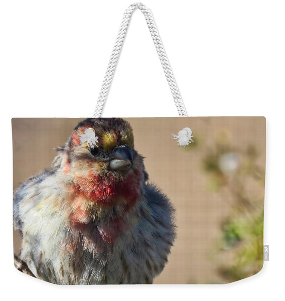 Rare Multicolored Male House Finch Weekender Tote Bag
