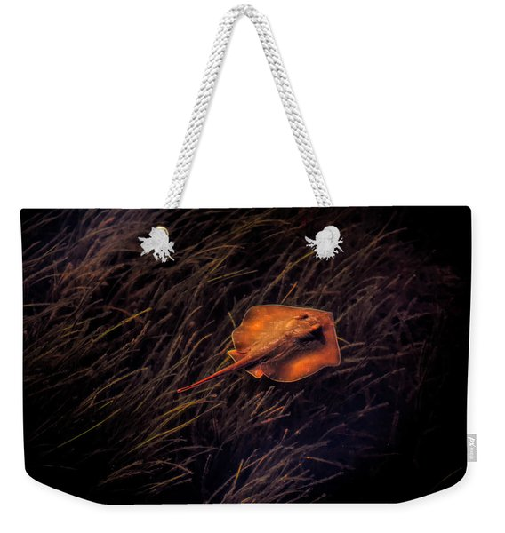 Ray In The Grass Flats Weekender Tote Bag