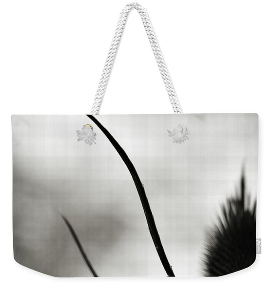 Weekender Tote Bag featuring the photograph Reach Up by Michelle Wermuth